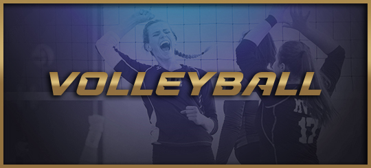 LA high school volleyball scores and power ratings